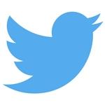 Les 5 erreurs à éviter sur Twitter